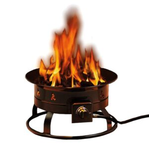 "Rich results on Google SERP when searching for ""fire pits for cooking"""
